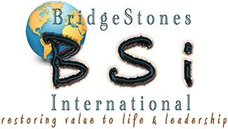 bsi-logo-new2